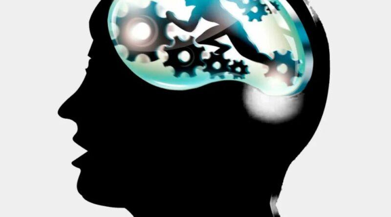 Какая школа ментальной арифметики лучше?